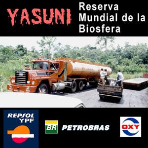 Yasuní,  reserva mundial de la biosfera (foto base: CEISI/Tony Fernández)
